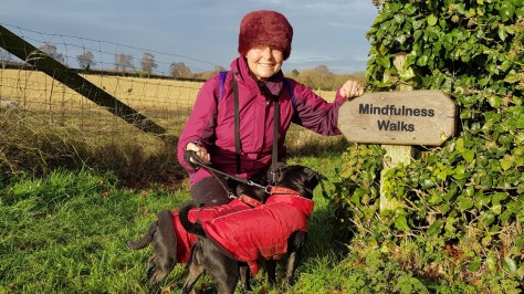 Mindfulness Walks at the Wind Energy Museum | Norfolk | Stating January 21st 2018